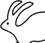 Eighteen Rabbit Fair Trade