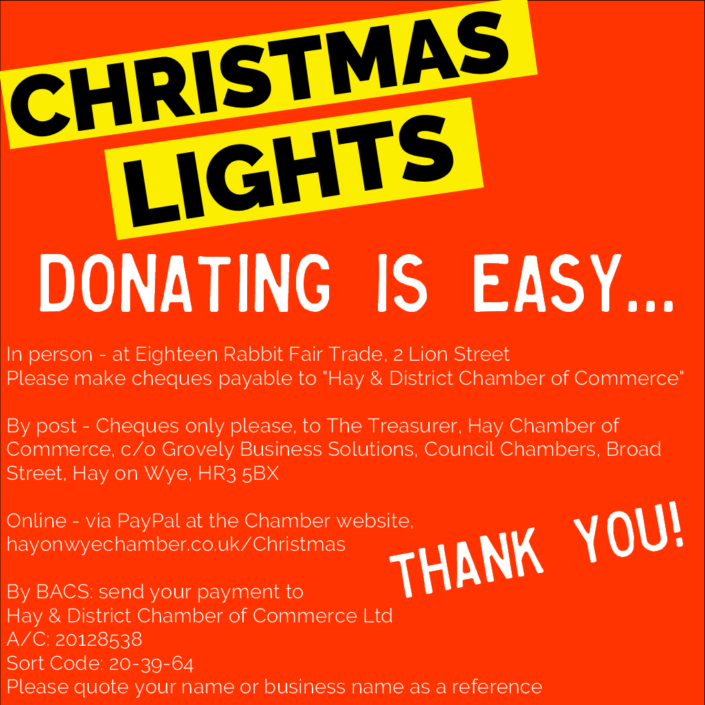 christmas lights donations